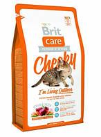 Сухой корм для кошек Brit Care Cat  Cheeky I am Living Outdoor 0,4 кг
