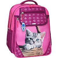 Рюкзак школьный Bagland Отличник 20 л. Малина (котенок в корзинке) (0058070), фото 1