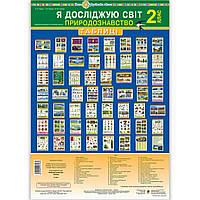 Таблиці Природознавство 2 клас НУШ Авт: Гладюк Т. Вид: Богдан, фото 1