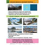 Таблиці Природознавство 2 клас НУШ Авт: Гладюк Т. Вид: Богдан, фото 3