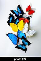 Настенный гибкий пленочный инфракрасный обогреватель картина Shine ЕК-027