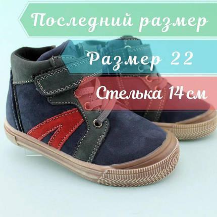 Детские ботинки мальчику весна осень кожа тм Том.м размер 22, фото 2