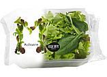 Слайсер салата 1000 кг/ч Eillert SLICE-20, фото 4