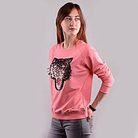Свитшот ANGRY CAT, фото 2
