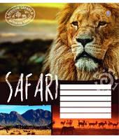 Тетрадь ученическая 24листа Сафари. Дикий мир, рисунки в ассортименте