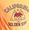 Мужская футболка Levis Graphic Tee - Golden Rod, фото 2