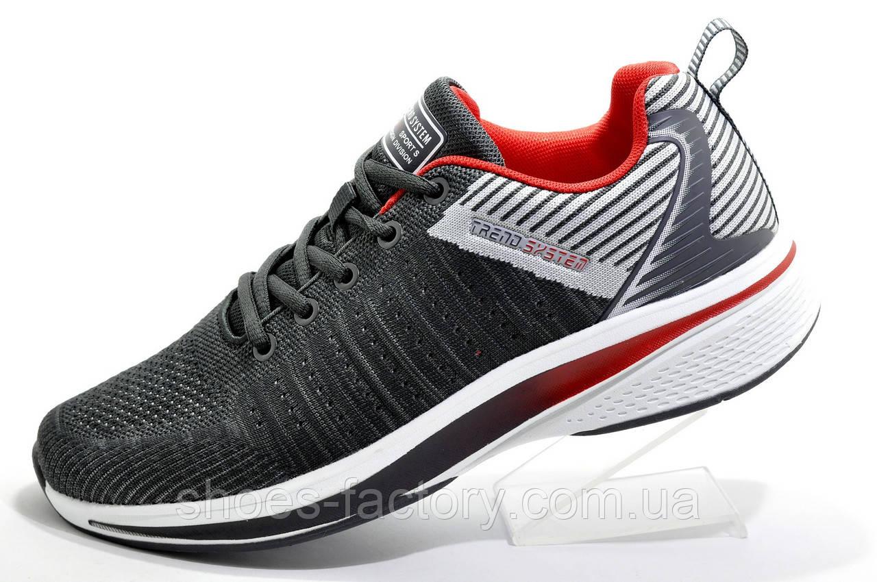 Беговые кроссовки Baas 2020, Dark Gray