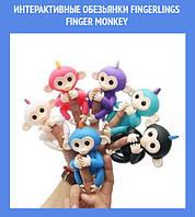 Интерактивные обезьянки Fingerlings Finger Monkey!Лучший подарок