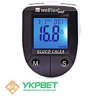 Глюкометр Wellion Gluco Calea для собак, кошек и лошадей