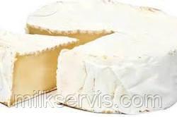 Технологическая схема  производства сыра с пленью -  Бри, Камамбер