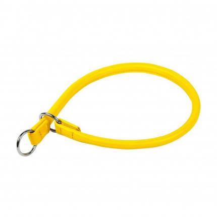 Ошейник-удавка Waudog Glamour для собак, рывковый, 6 мм, 30 см, желтый, фото 2