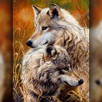 Алмазная мозаика Семья Волков 40x50 TWD20010L The Wortex Diamonds Полная зашивка Животные