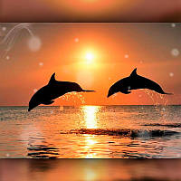 Алмазная мозаика Дельфины на закате 40x50 TWD30019L The Wortex Diamonds Полная зашивка Морские