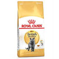 Royal Canin British Shorthair ( Роял Канин для взрослых британцев), 10 кг