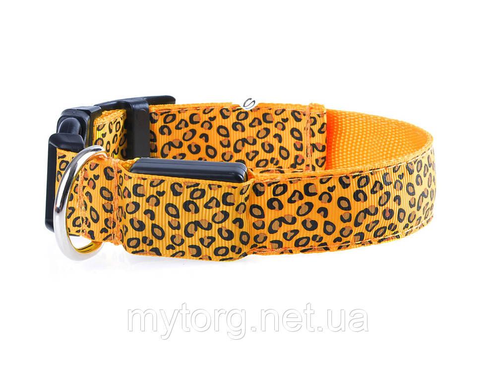 Светящийся светодиодный ошейник для собак Леопард М 40-48см Оранжевый