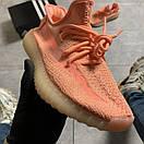 Женские кроссовки Adidas Yeezy Boost 350 V2 Pink, фото 4