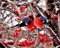 Картина по номерам Снегири, 40x50 см., Mariposa