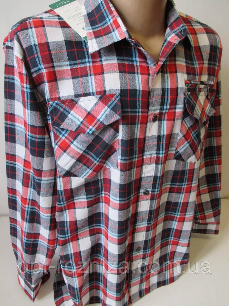 Клетчатые рубашки с длинным рукавом