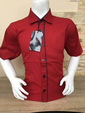 Дитяча сорочка з коротким рукавом Ikoras 11-16, фото 2