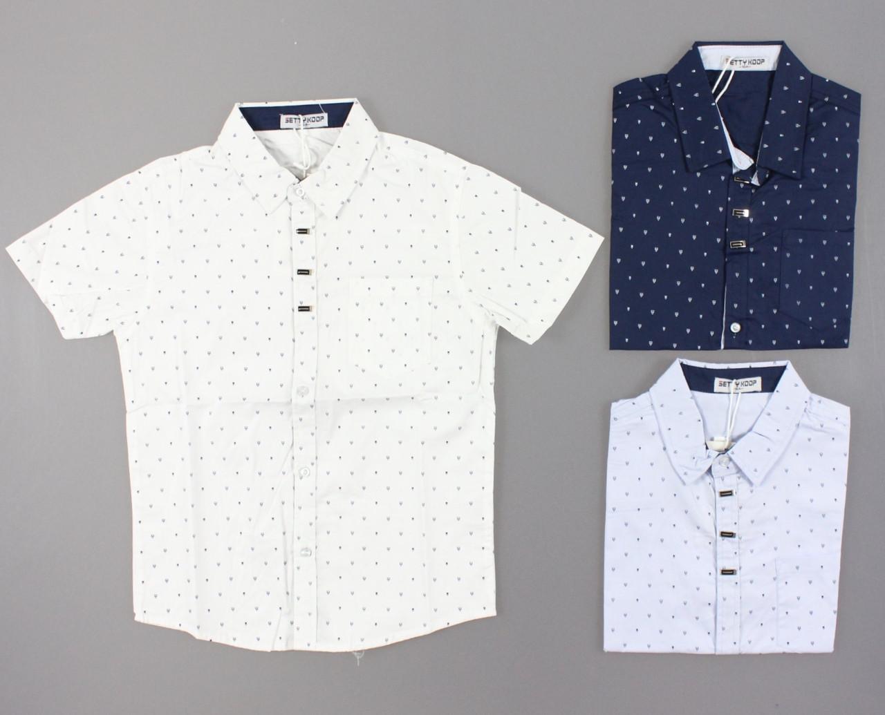 {есть:8 лет} Рубашка для мальчиков Setty Koop, Артикул: CA009 [8 лет]