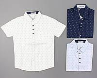 {есть:8 лет} Рубашка для мальчиков Setty Koop, Артикул: CA009 [8 лет], фото 1