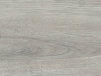 Виниловая плитка Polyflor Expona Bevel Line Wood PUR Ashen Oak 2818
