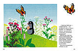 Детская книга Кротик: большая книга  Для детей от 3 лет, фото 3