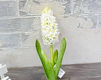 Гіацинт білий преміум 40 см, фото 1
