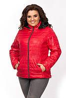 Красная демисезонная  женская стеганая короткая батальная куртка с капюшоном  (р.48-56). Арт-1806/9