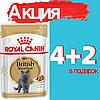Корм Роял Канин Бритиш Шортхеир Royal Canin British Shorthair влажный для кошек в соусе 85 г (4+2)