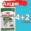 Корм Роял Канин Мини Адалт Royal Canin Mini Adult влажный для взрослых собак мелких пород 85 г(4+2)
