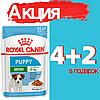 Корм Роял Канин Мини Паппи Royal Canin Mini Puppy влажный для щенков мелких пород 85 г(4+2)