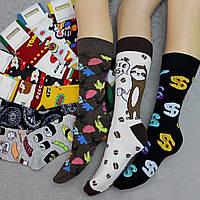 """Носки высокие (удлиненные), 37-45 р-р .""""Натали"""".  Женские удлиненные  носки, гольфы, фото 1"""