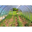 "Теплица""Вишневый сад"" 3,5х4х2м (Турция), труба 40х20 - оцинковка + поликарбонат 4мм, фото 4"