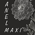 Anel Maxi