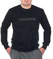 """Свитшот мужской молодежный """"PHILIPP PLEIN"""" размеры46-52, черного цвета"""