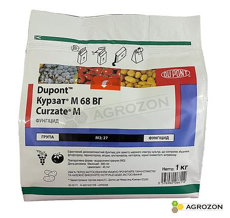 Фунгіцид Курзат М Corteva - 1 кг, фото 2