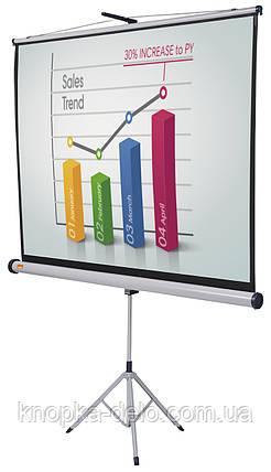 Nobo проекционный экран на треноге напольный (4:3) 175,0 x 132,5 см (1902396), фото 2