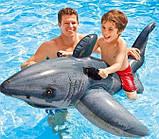 Детский надувной плотик игрушка Акула 173х104см, фото 5
