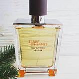 Hermes Terre d'hermes Eau Intense Vetiver парфумована вода 100 ml. (Терра Д Гермес Єау Інтенс Ветивер), фото 4