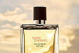 Hermes Terre d'hermes Eau Intense Vetiver парфумована вода 100 ml. (Терра Д Гермес Єау Інтенс Ветивер), фото 6