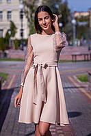Короткое бежевое платье на длинный рукав из сетки в горох (M, L, XL)
