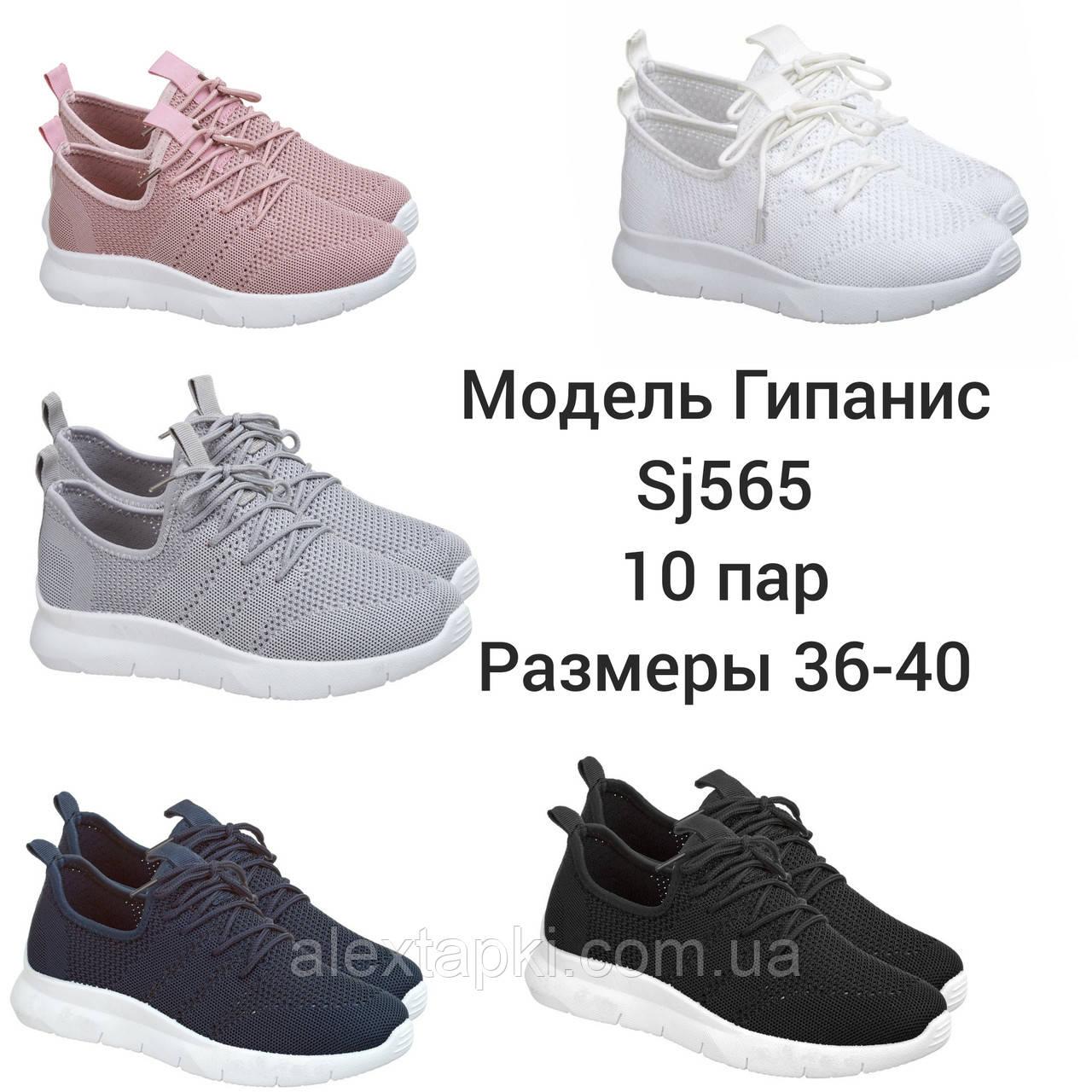Женские Кроссовки Гипанис SJ565