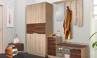 Прихожая ВИЗИТ - Шкаф, фото 1