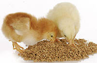 Комбикорм старт для цыплят, 10 кг