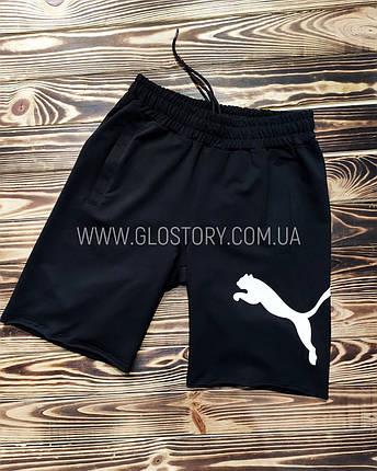 Мужские шорты PUMA (Реплика), фото 2