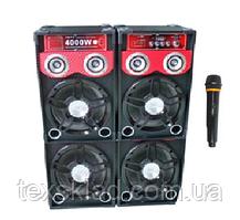 Активні колонки STAGE 210E з радіомікрофоном (250W)