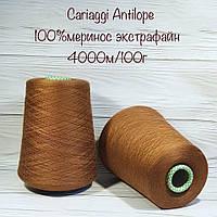 Итальянская бобинная пряжа для вязания меринос от Cariaggi
