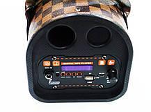 TTD-501 портативна Бездротова bluetooth колонка - валіза з караоке, фото 2