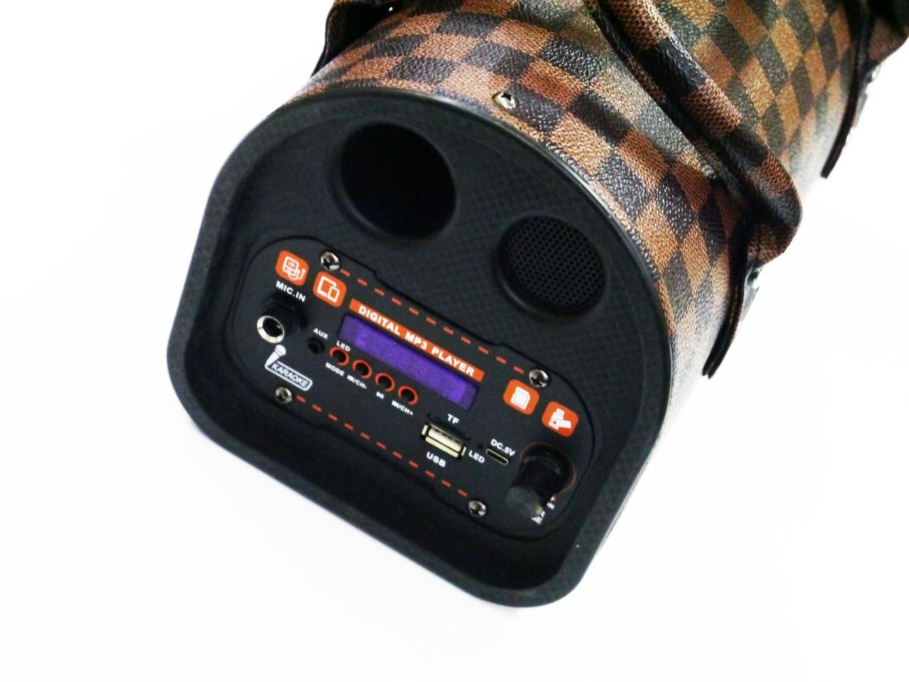 TTD-501 портативна Бездротова bluetooth колонка - валіза з караоке